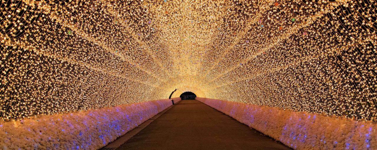 Фестивалі світла